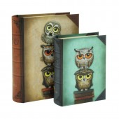 Gorjuss Set 2 cutii carte Book Owls